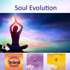 soul Evoution contains 3 courses within the New Awakening Process