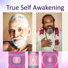 True-self Awakening contains 3 courses in the New Awakening Process